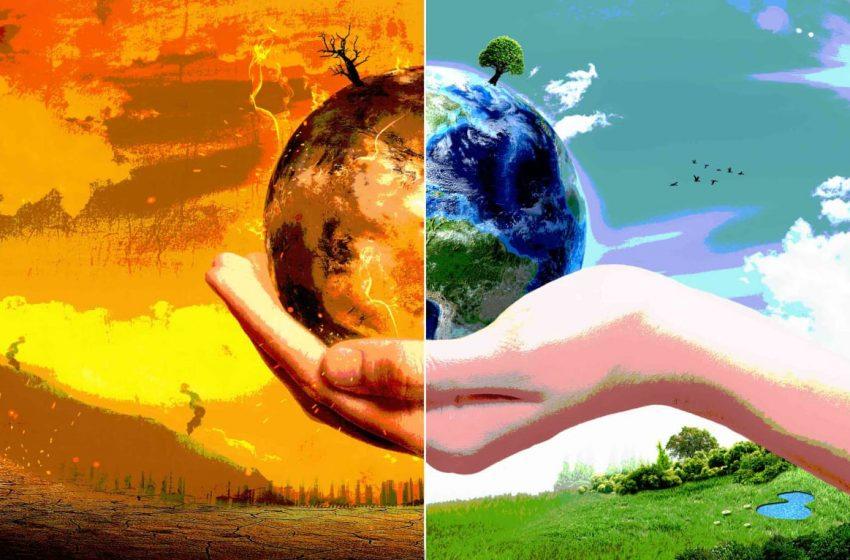 Tak Seimbangnya Alam Akibat Keserakahan Manusia, Tuai Wabah Corona