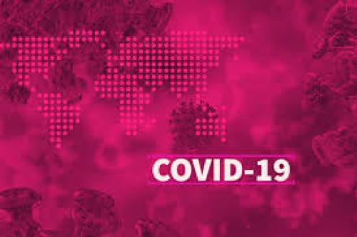 Tambah 2, Pasien Virus Corona Covid-19 di Indonesia Jadi 4 Orang