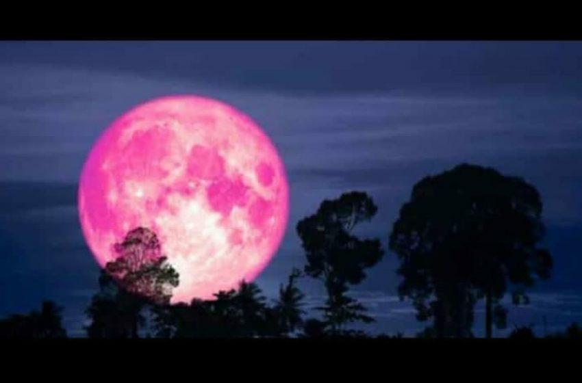 Bulan Bakal Bersinar Pink Malam Ini, Fenomena Supermoon Perigee