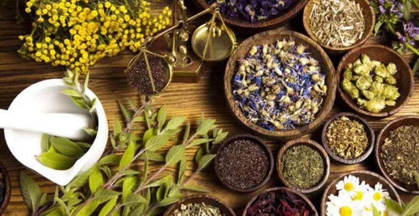 Percepat Penemuan Anti Virus Covid-19 Berbasis Herbal
