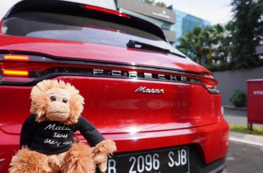 Porsche Indonesia Gelar Program Macan Saves Orangutan